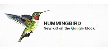 Hummingbird - new birdie in Google?